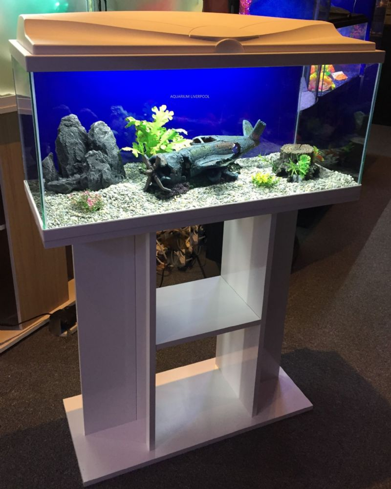 Ciano Aqua 80 LED Tropical Glass Aquarium & Stand  71L WHITE